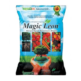 Magic Leaon